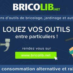 Le bricolage économique grâce à Bricolib !