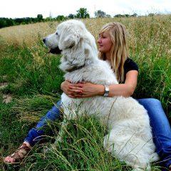 AnimoVacances, la garde collaborative gratuite pour vos animaux